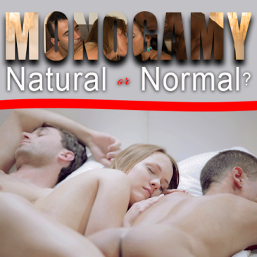 monogamy is natural or normal, llvclub, monogamy, non-monogamy, swingers blogs, swingers cruises